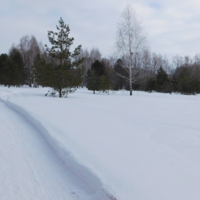 Зима в Садовке