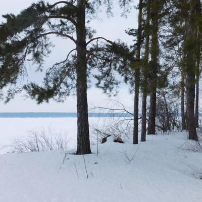 Старомайнский залив зимой